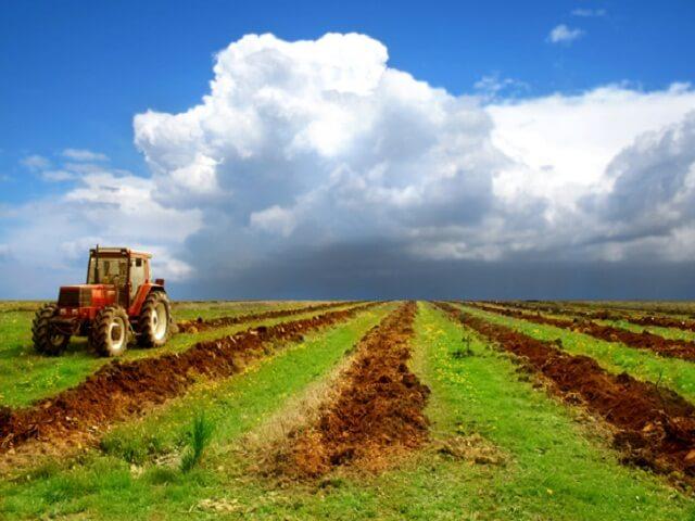 Сколько стоит пай земли и от чего зависит его стоимость?