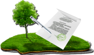 Процедура покупки земельного участка
