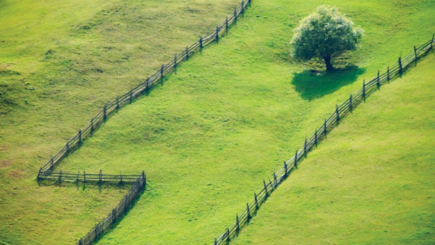 Как выделить свою долю земли из пашни