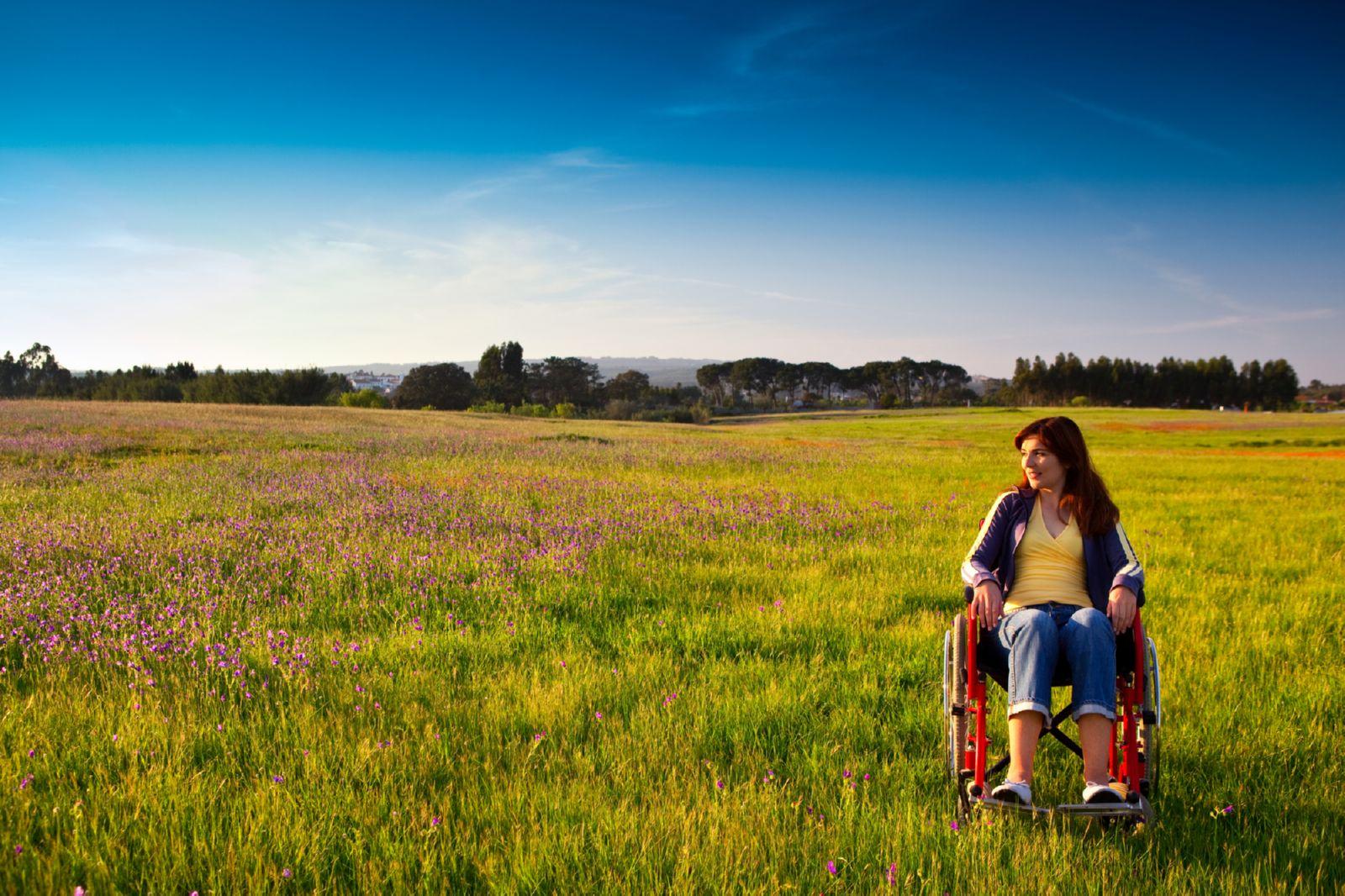 Образец заявления на предоставление земельного участка инвалиду