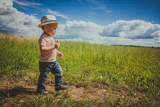 Договор дарения земельного участка как провести процедуру правильно